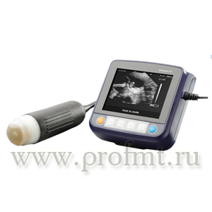 Ветеринарный УЗИ сканер AcuVista VT98m